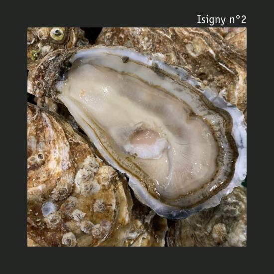 Isigny n°2 - La douzaine - Huîtres vrac